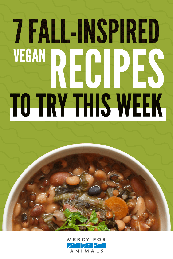 7 Fall-Inspired Vegan Recipes to Try This Week