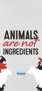 Animals-Ingredients-iphone-X-139x300 These 10 Free Vegan iPhone Wallpapers Will Inspire You