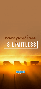 IPHONEX-5-139x300 These 10 Free Vegan iPhone Wallpapers Will Inspire You