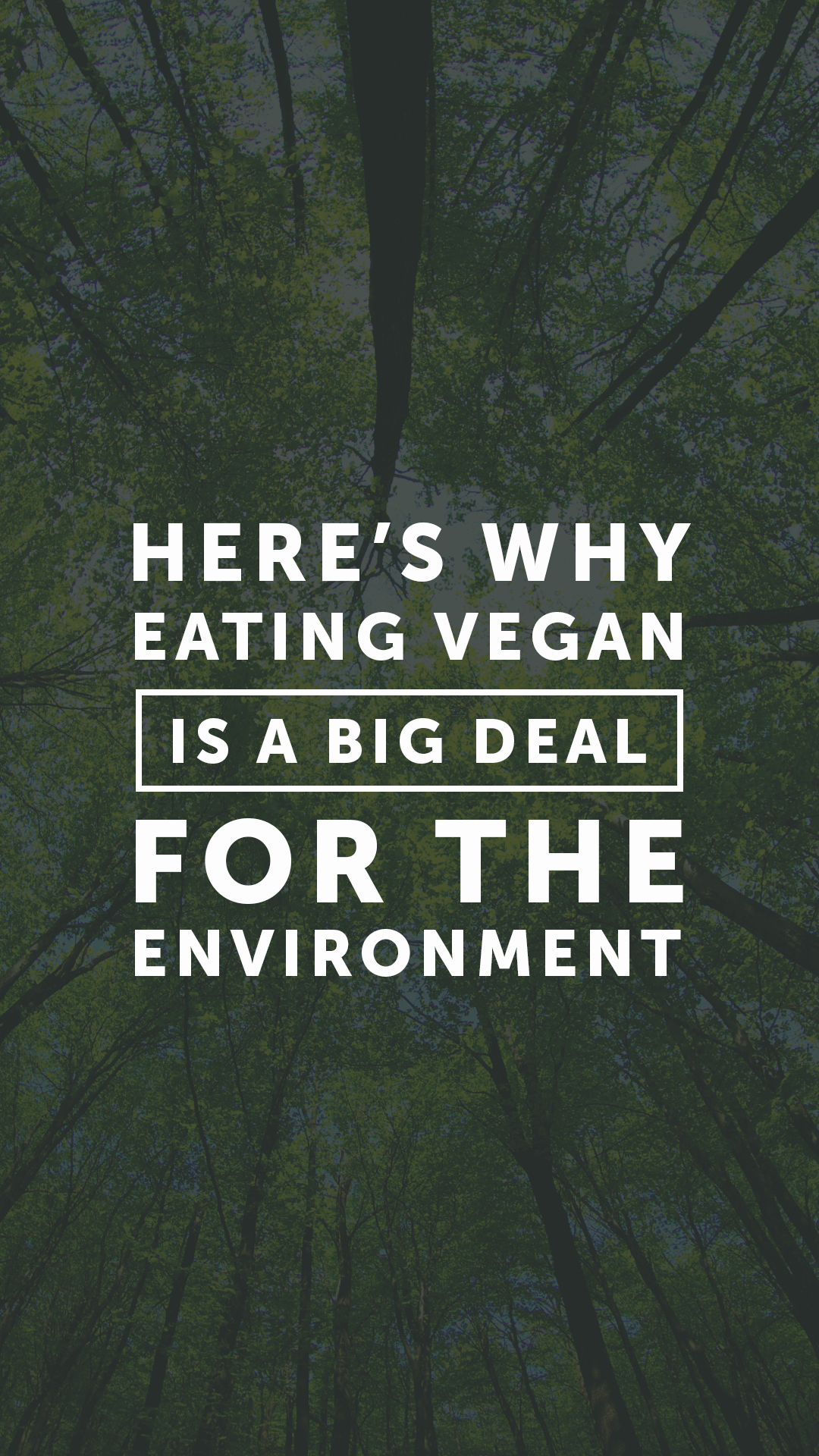 Eating Vegan Is Still One of the Best Things You Can Do for the Environment