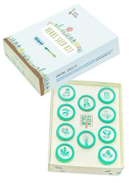 MFA Herbs Seed Kit